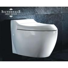 Design WC-Becken Windsor Wandhängend